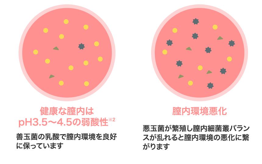 膣内の酸性度が下がることで悪玉菌が増殖し、それが原因となって膣内環境が悪化